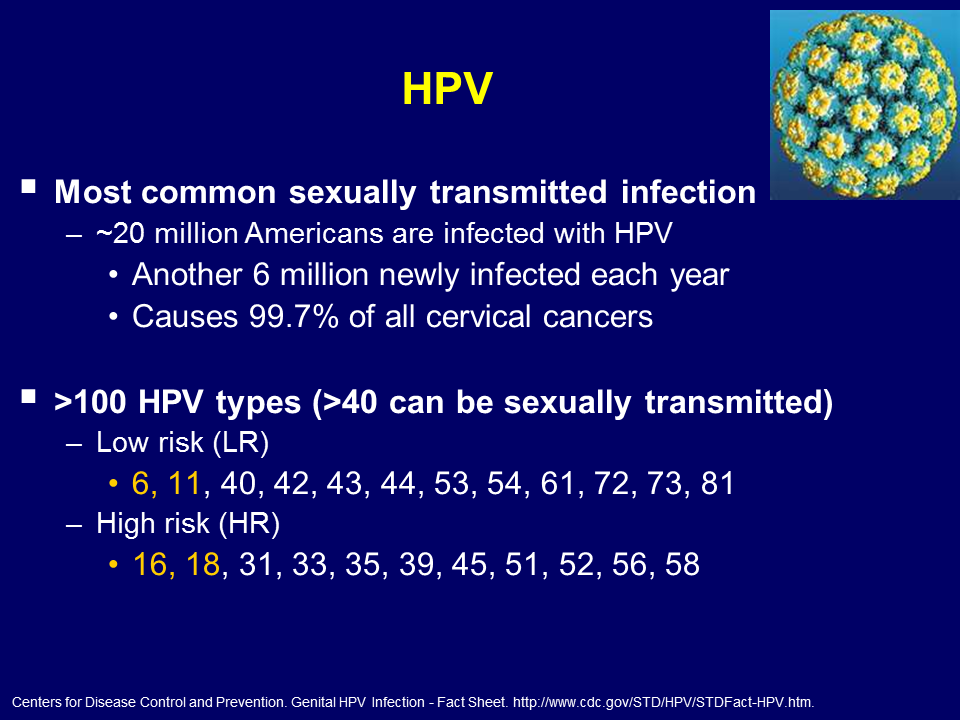 high risk hpv mean cancer)