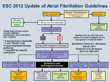 Esc 2012 Update Of Atrial Fibrillation Guidelines Oral
