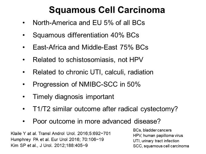 schistosomiasis and bladder cancer